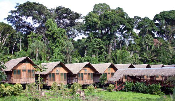 Amazon travel lodge