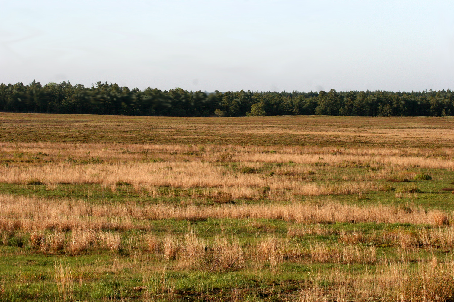 arenal, rahwat river, arthur killt, lakehurst, terrapins 235